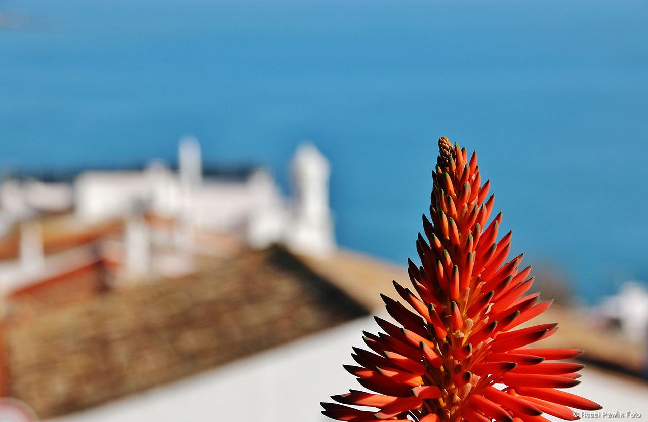 Algarve 21