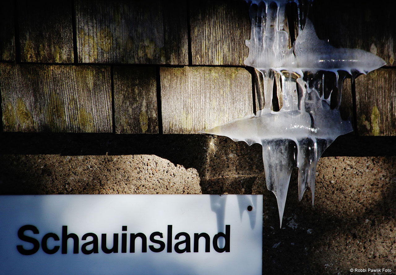 Schauinsland 11